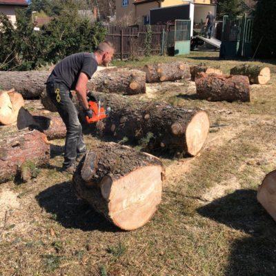 Výškové práce a rizikové kácení stromů