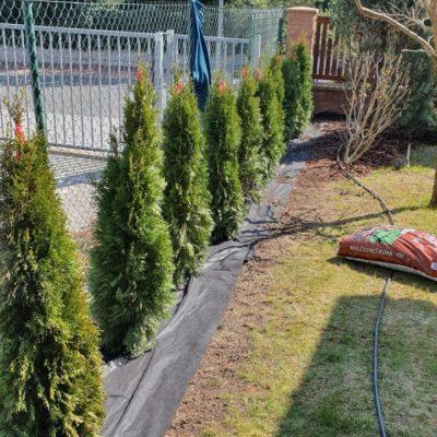 Zahradnické práce, projektování a realizace zahrad